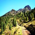 Schöner Diorama Effekt auf dem Bergpfad