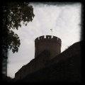 Schloss Alsbach (Bickenbach)