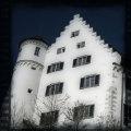 Schloss Aulendorf (Königsegg)