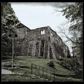 Burg Cheb (Burg Eger - Chebský hrad)