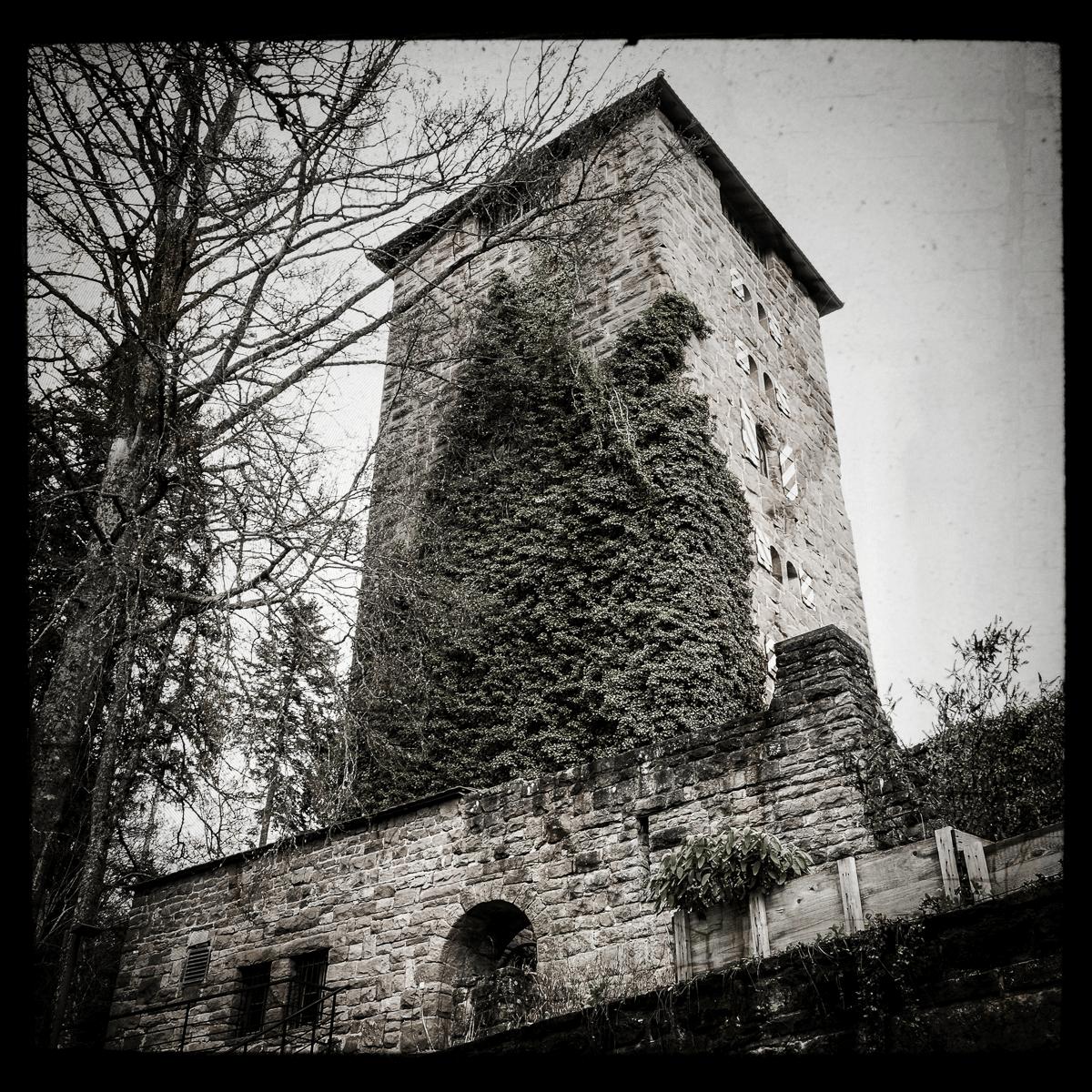 Schloss Hornberg (Hornburg)