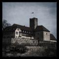 Burg Lauffen (Grafenburg)