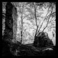 Ruine Leckstein (Lägstein)