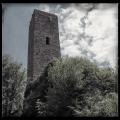 Burg Scharfenberg/Münz
