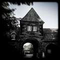 Schloss Zingst - Querfurt